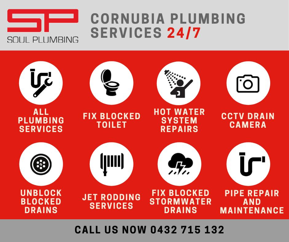 cornubia plumber services