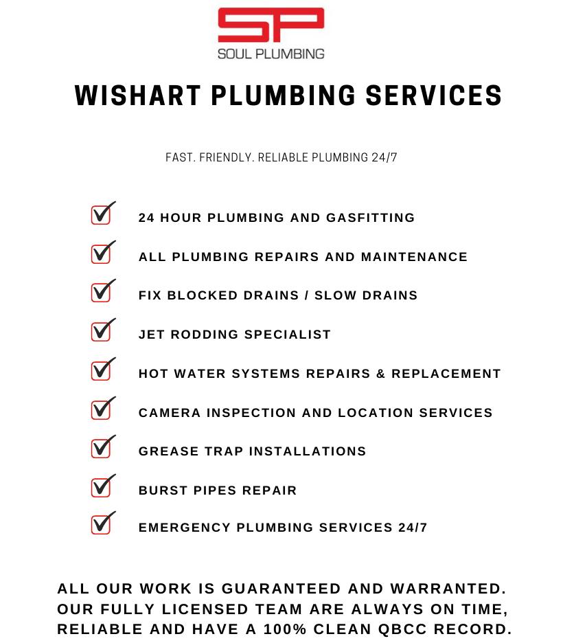 plumber wishart services